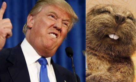 """""""Parecidos razonables"""" Hoy le toca a… ¡Donald Trump!"""