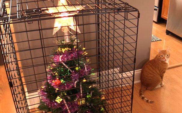 Protege tu árbol de navidad de perros y gatos.