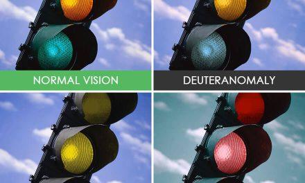 Mira cómo ve la gente con problemas de visión los colores y la vida