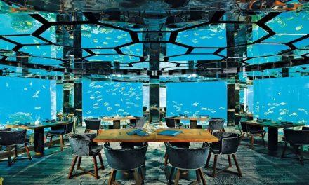 Un restaurante bajo del mar en las Maldivas donde la cena es espectacular