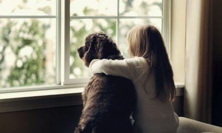 Cosas que le haces a tu perro y que él odia