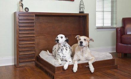 Gana espacio en tu casa para tus mascotas