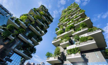 Arquitectos que aman la naturaleza por sus proyectos