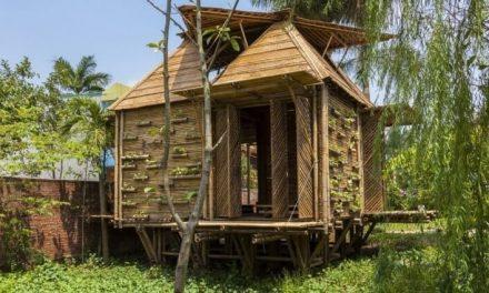 Una casa de bambú a prueba de desastres naturales